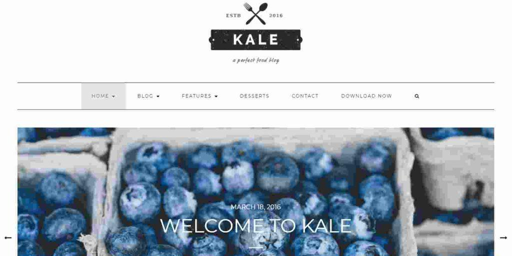 best theme for food blogging free
